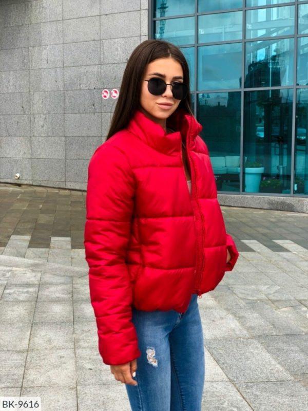 Женская куртка короткая